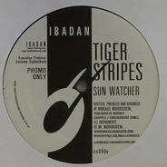 Tiger Stripes - Sun Watcher