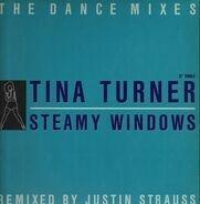 Tina Turner - Steamy Windows (The Dance Mixes)