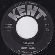 Tony Allen - Dreamin