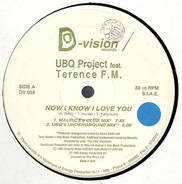 UBQ Project Feat. Terence FM - Now I Know I Love You