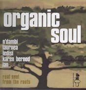 N'Dambi, Ledisi a.o. - Organic Soul