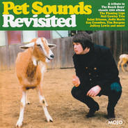Saint Etienne / Magnetic North / The Sand Band a.o. - Pet Sounds Revisited (A Tribute To The Beach Boys' Classic 1966 Album)