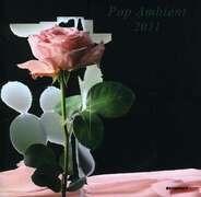 ANBB / Marsen Jules / Triola a.o. - POP AMBIENT 2011