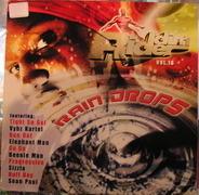 Reggae Sampler - Riddim Rider Vol. 16 Rain Drops