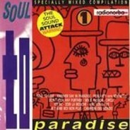Ice MC, Passion, Michelle a.o. - Soul To Paradise / Special Mixed Compilation