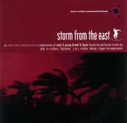 PFM, JMJ & Richie, Hyper-On Experience a.o. - Storm From The East