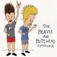 Nirvana, Aerosmith, Sir Mix-A-Lot, a.o. - The Beavis And Butt-Head Experience