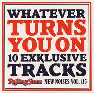 Junip / Gemma Hayes / Matthew E. White a.o. - Whatever Turns You On (10 Exklusive Tracks - New Noises Vol. 115)