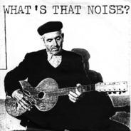 Terminals, Dead C. a.o. - What's That Noise