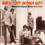 The Boys, The Unknowns, The district Six a.o. - Where You Gonna Go? (Motor City Garage Bands 1965-1969)