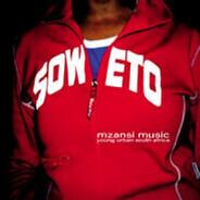 Mapaputsi, Zola a.o. - Mzansi Music: Young Urban South Africa