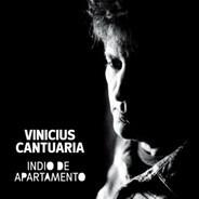 Vinicius Cantuária - Indio de Apartamento