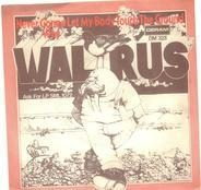 Walrus - Never Gonna Let My Body Touch The Ground / Why