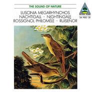 Walter Tilgner - Luscinia Megarhynchos • Nachtigall • Nightingale • Rossignol Philomèle • Ruiseñor