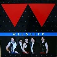Wildlife - Wildlife