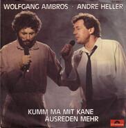 Wolfgang Ambros . André Heller - Kumm Ma Mit Kane Ausreden Mehr