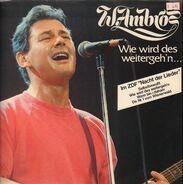 Wolfgang Ambros - Wie Wird Des Weitergeh'n...