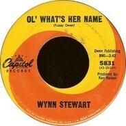 Wynn Stewart - It's Such a Pretty World Today
