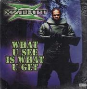 Xzibit - What U See Is What U Get