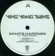 Ying Yang Twins - What's Happnin! / Salt Shaker Remix