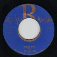 Zig Dillon - Bird Song Boogie /  Beetle Bug