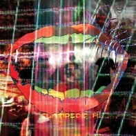 Animal Collective - Centipede HZ - Limited Edition 1st Press