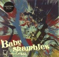 Babyshambles - FALL FROM GRACE