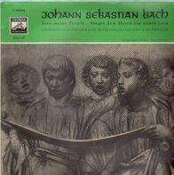 Bach - Jesu meine Freude, Singet dem Herrn ein neues Lied