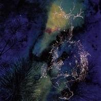 Bardo Pond - Under The Pines