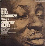Big Bill Broonzy - Sings Country Blues