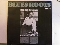 Big Bill Broonzy - If You're Black Get Back