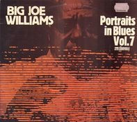 Big Joe Williams - Portraits In Blues, Vol. 7