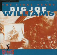 Big Joe Williams - The Final Years