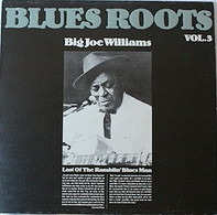 Big Joe Williams - Blues Roots Vol.3 - Last Of The Ramblin Blues Man