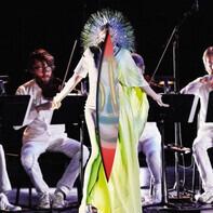 Björk - Vulnicura Strings