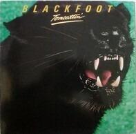 Blackfoot - Tomcattin'