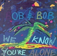 Bob & Bob - We Know You're Alone