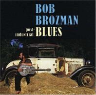 Bob Brozman - Post-Industrial Blues