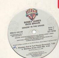 Boney James & Rick Braun - Grazin' In The Grass