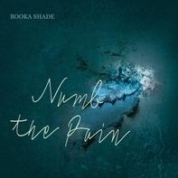 Booka Shade - Numb The Pain (with Craig Walker)