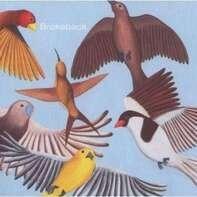 Brokeback - Looks at the Bird