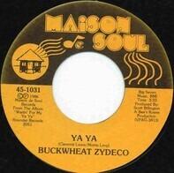 Buckwheat Zydeco - Ya Ya