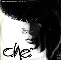 Che - What You've Been Through Is Love