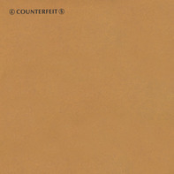 Counterfeit - The Good Samaritan