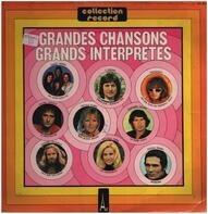 Crazy Horse / Michel Jonasz a.o. - Grands Interprètes, Grandes Chansons