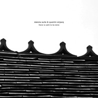 Dakota Suite /Quentin Sirjacq - There is Calm To Be Done