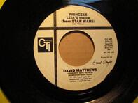Dave Matthews - Princess Leia's Theme (From Star Wars)