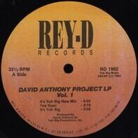 David Anthony - David Anthony Project LP Vol. 1
