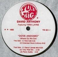 David Anthony Featuring Tara Layne - Dove Andiamo (Where Do We Go!)