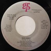David Benoit - The Key To You